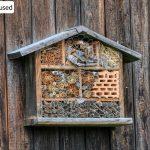 Hmyzí hotel – vyrobit ho zvládne každý